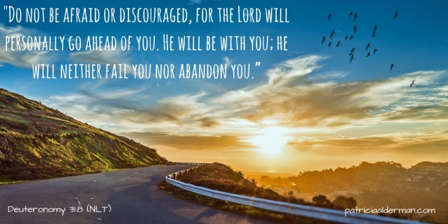 """_Do not be afraid or discouraged, for the Lord will personally go ahead of you. He will be with you; he will neither fail you nor abandon you."""""""